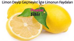 Limon Deyip Geçmeyin! İşte Limonun Faydaları