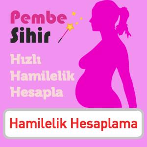 Hamilelik Hesapla