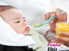6 Aylık Bebeklerde Beslenme