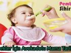 Bebekler İçin Avokadolu Mama Tarifleri